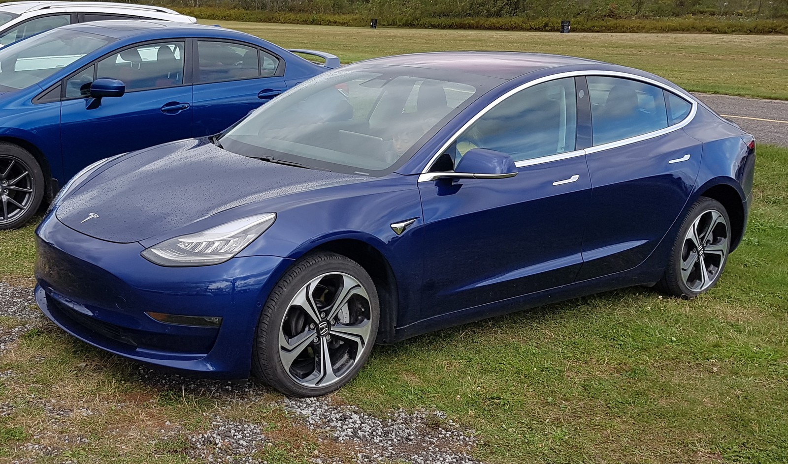 Blue 2019 Tesla Model 3 Long Range Dual Motor
